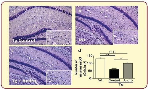 neuroactin-data-3