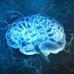 HP Ingredients Announces New IQ200® Study for the Brain Health Market